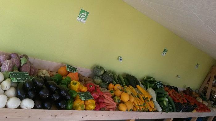 8f0255e6ea6 Arnaud Bio – Producteur de fruits et légumes bio à Pignan et Montpellier